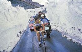 n_Giro-d-Italia-1980-Hinault-Stelvio